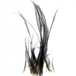 "Cassowary Feathers (25) 2-10"" Mixed"